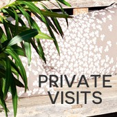 Private visits