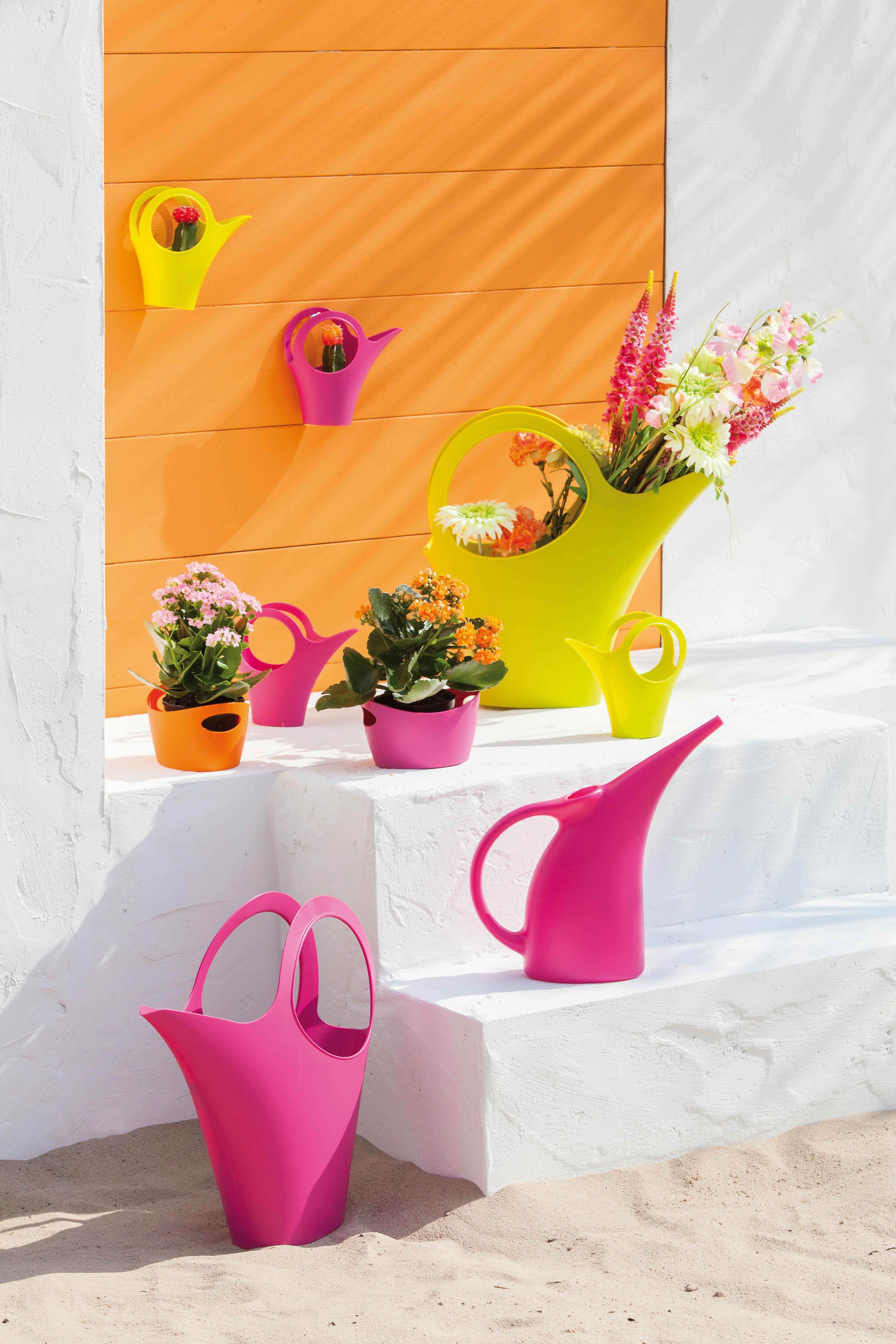 arrosoir elise rose koziol. Black Bedroom Furniture Sets. Home Design Ideas