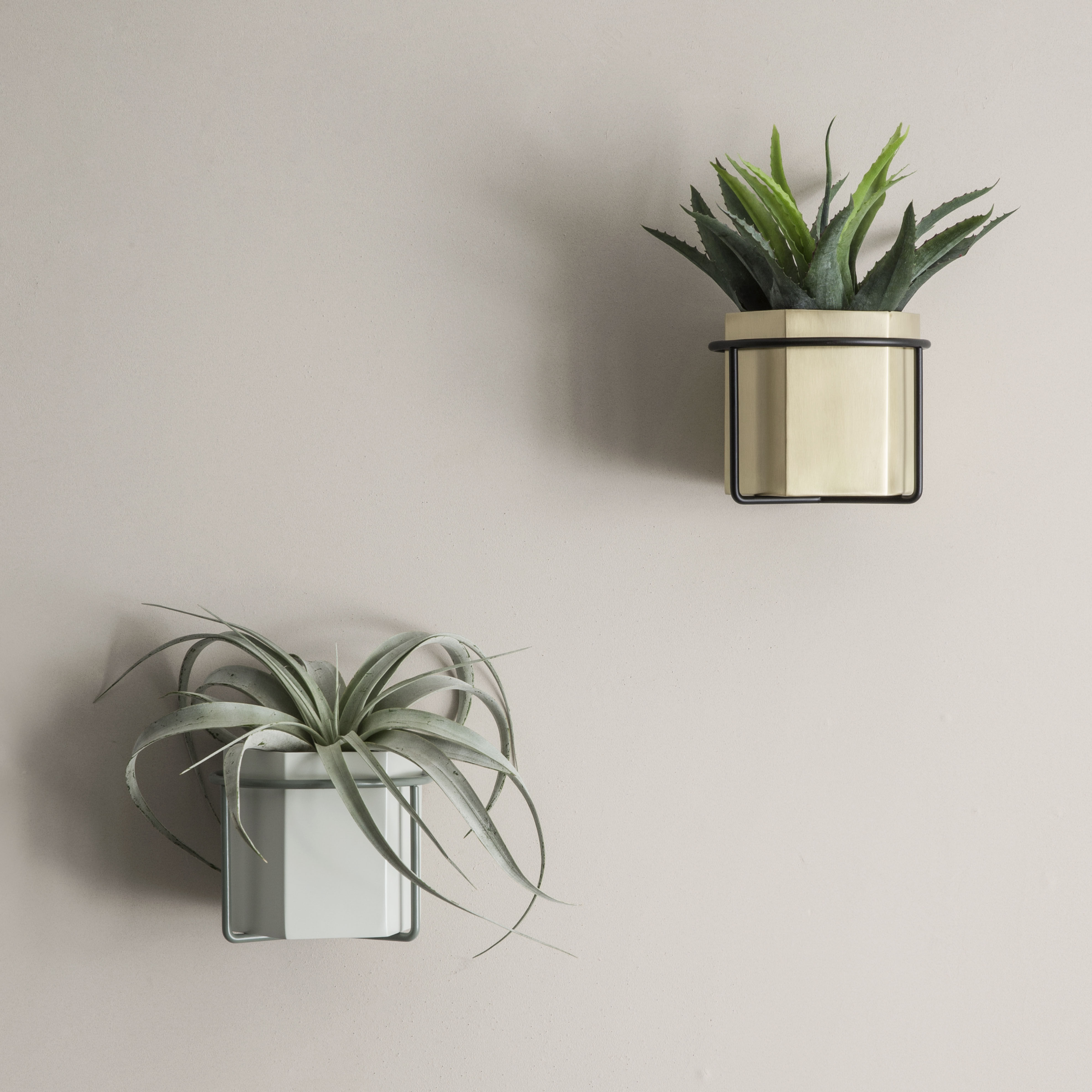 Support mural plant pour pot de fleurs gris ferm living for Plants de fleurs