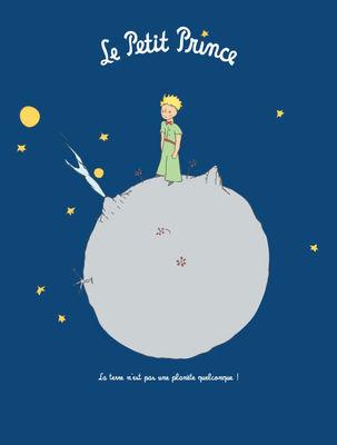 Le Petit Prince La Terre Poster 40 X 50 Cm Earth By