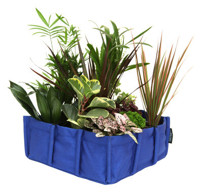 Mini Bacsquare Planter - Indoor - 10L