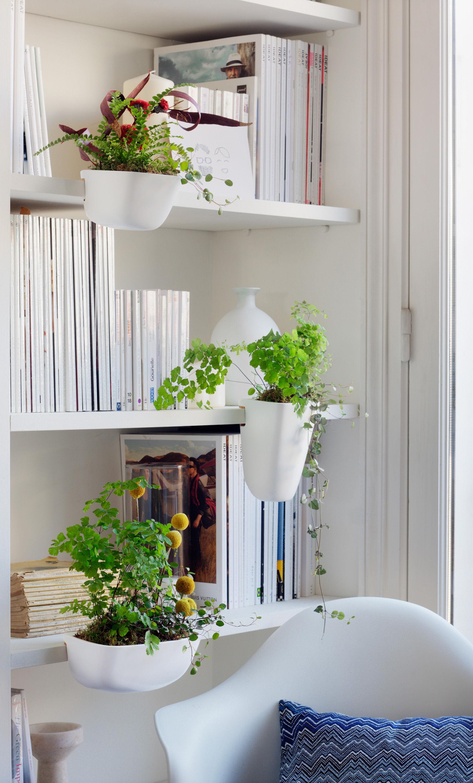 pot de fleurs ho pour tag res et biblioth ques taille. Black Bedroom Furniture Sets. Home Design Ideas