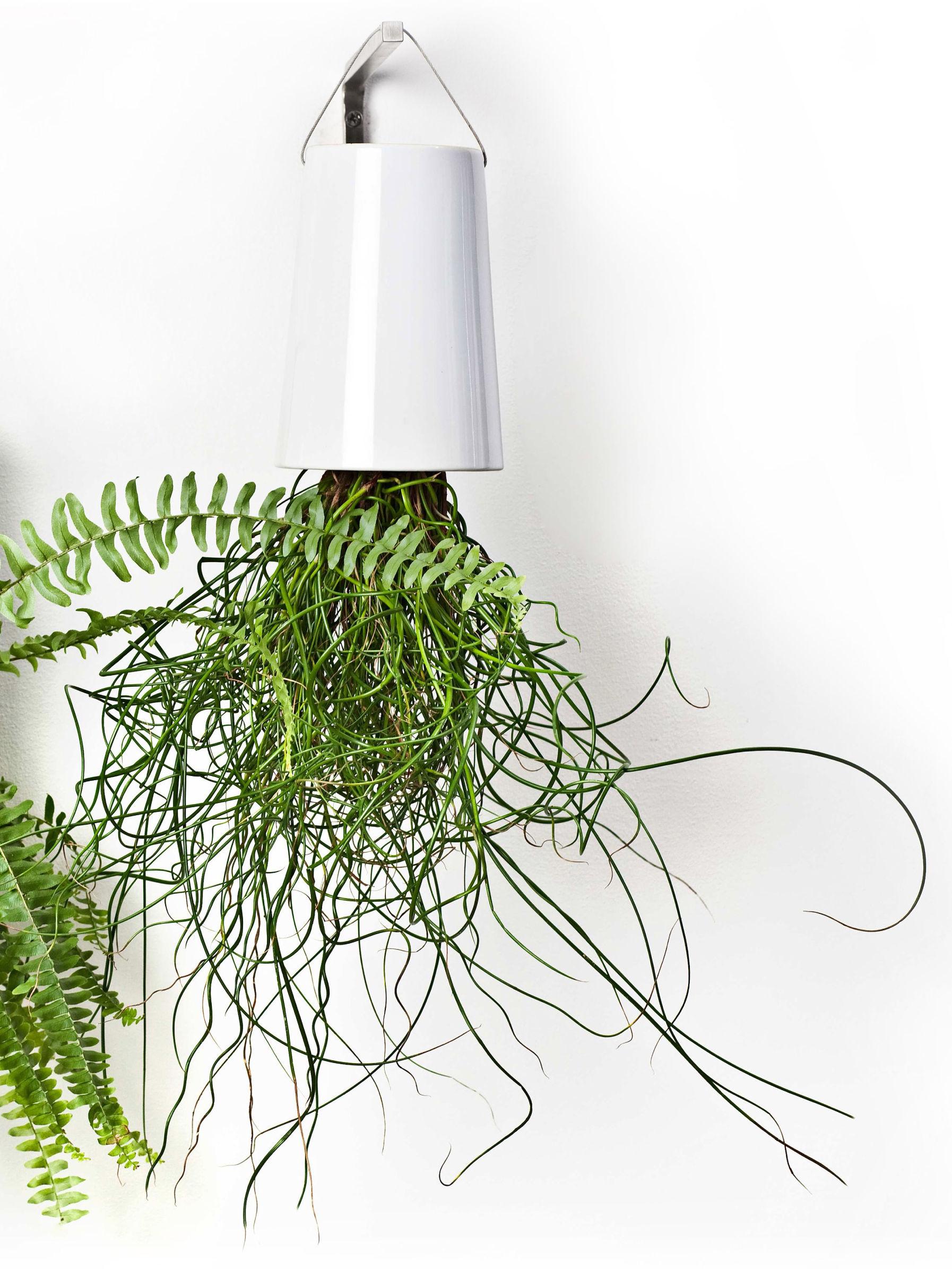 f r sky planters boskke wandhalter. Black Bedroom Furniture Sets. Home Design Ideas