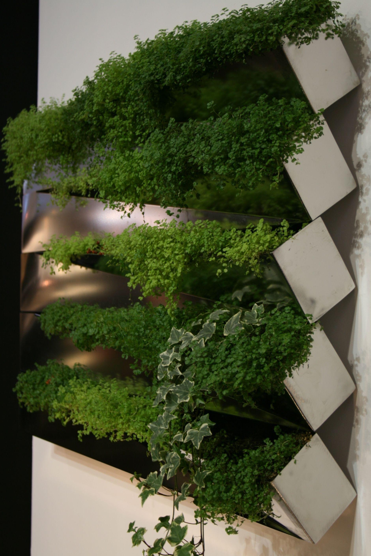 jardini re miroir en herbe murale compagnie inox ebay. Black Bedroom Furniture Sets. Home Design Ideas