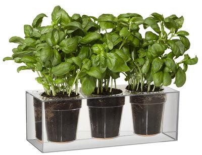 jardini re cube avec r serve d 39 eau pour 3 plantes transparent boskke. Black Bedroom Furniture Sets. Home Design Ideas