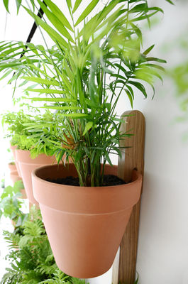 support mural xpot pour 3 pots de fleurs h 150 cm bois clair compagnie. Black Bedroom Furniture Sets. Home Design Ideas