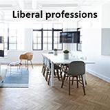 Liberal professions