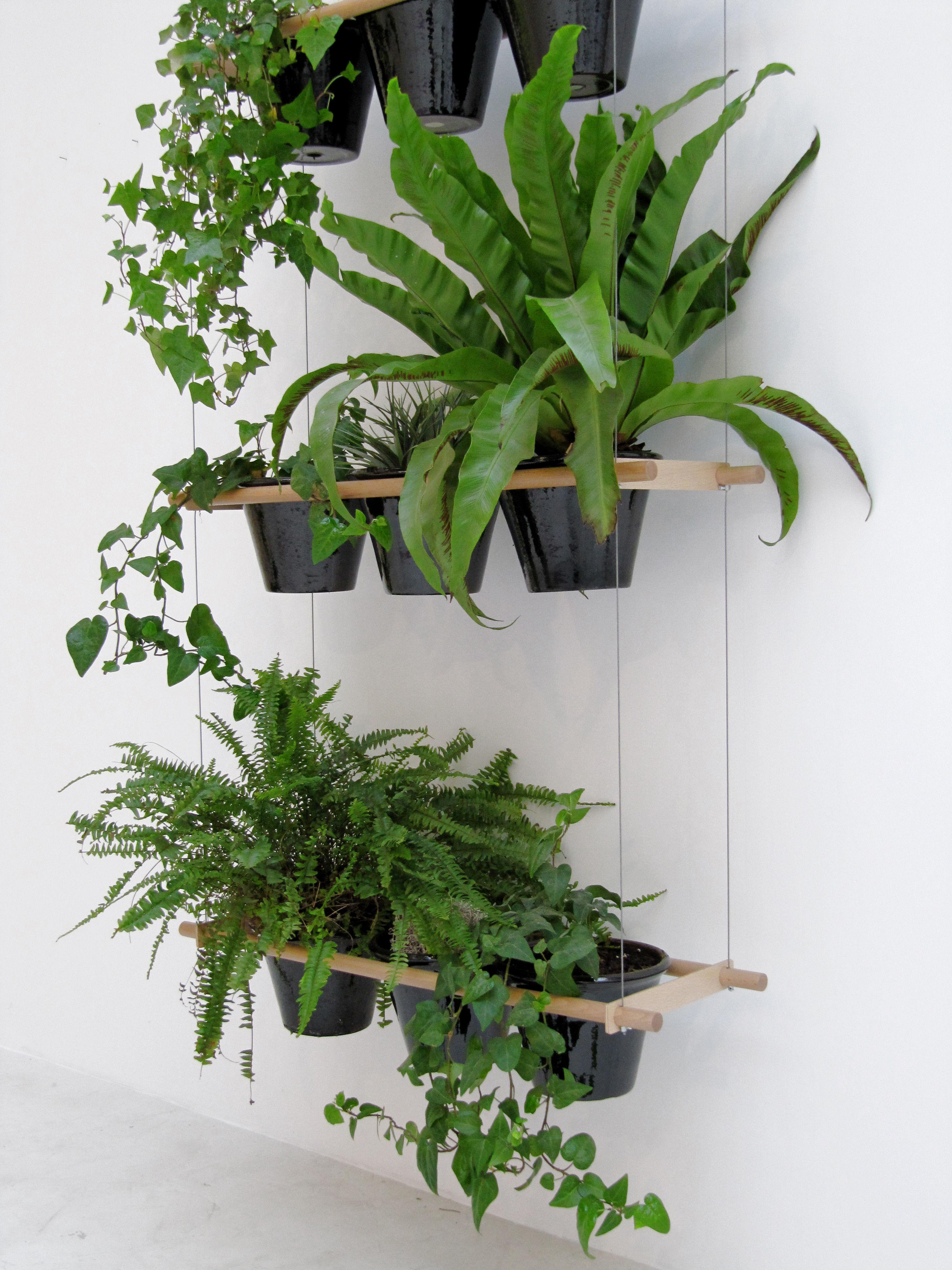 etcetera h nge blumenkasten blumenampel naturholz by compagnie made in design. Black Bedroom Furniture Sets. Home Design Ideas