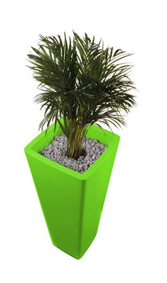 Foto Vaso per fiori All so quiet - A 110 cm di Qui est Paul ? - Verde - Materiale plastico