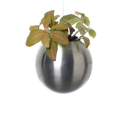 pot de fleurs sph re pot de fleur suspendu 10 cm 10 cm inox mat pa design. Black Bedroom Furniture Sets. Home Design Ideas