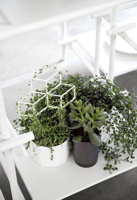 tuteur pov medium pour plantes grimpantes h 42 cm noir. Black Bedroom Furniture Sets. Home Design Ideas
