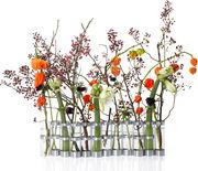 Get 30 off on April Vase collection of Tsé-Tsé