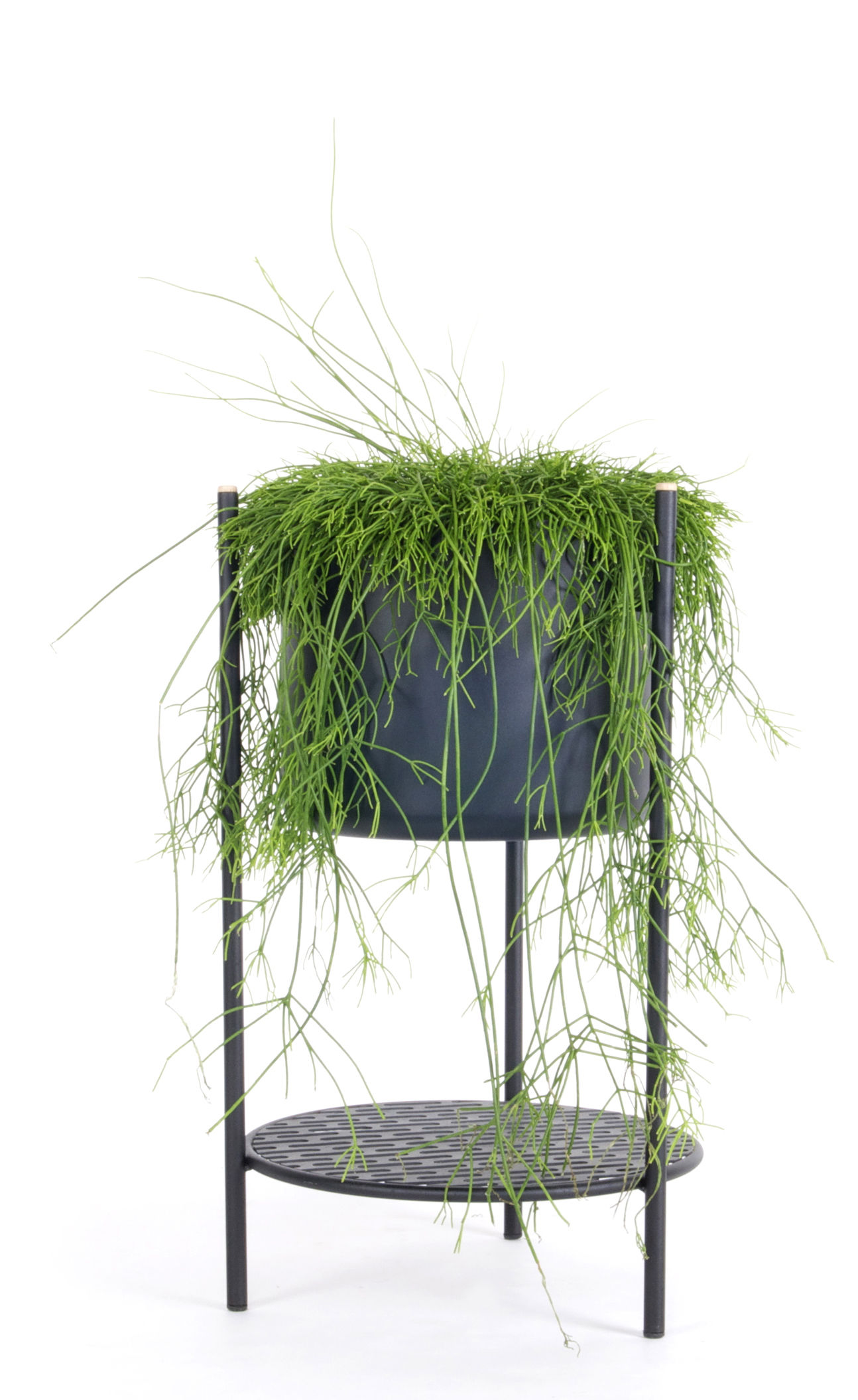 ent small flowerpot h 56 cm metal h 56 cm black by xl boom. Black Bedroom Furniture Sets. Home Design Ideas