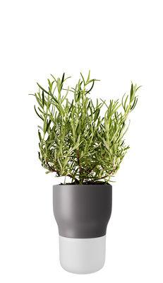 Image of Vaso da fiori con riserva d'acqua / Medium - Ø 11 x H 15 cm - Eva Solo - Traslucido,Grigio nordico - Vetro