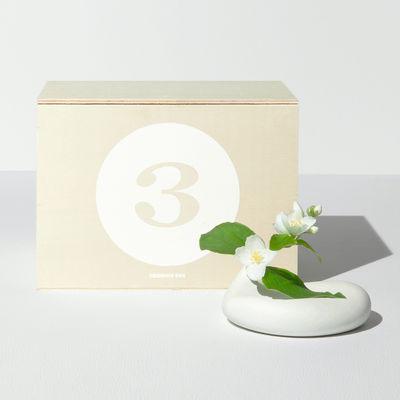 Coffret Designerbox#3 / Soliflore Emotion - Aldo Bakker - Designerbox blanc en céramique