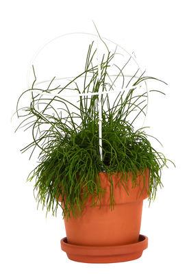 Jardin - Pots et plantes - Pot de fleurs Outline avec tuteur /  Petit modèle - Structure 1 - ENOstudio - Structure 1 / Terracotta & blanc - Métal, Terre cuite