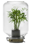 Jar Self-sufficient greenhouse...