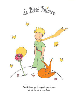 le petit prince la rose poster 40 x 50 cm the rose by image republic made in design uk. Black Bedroom Furniture Sets. Home Design Ideas