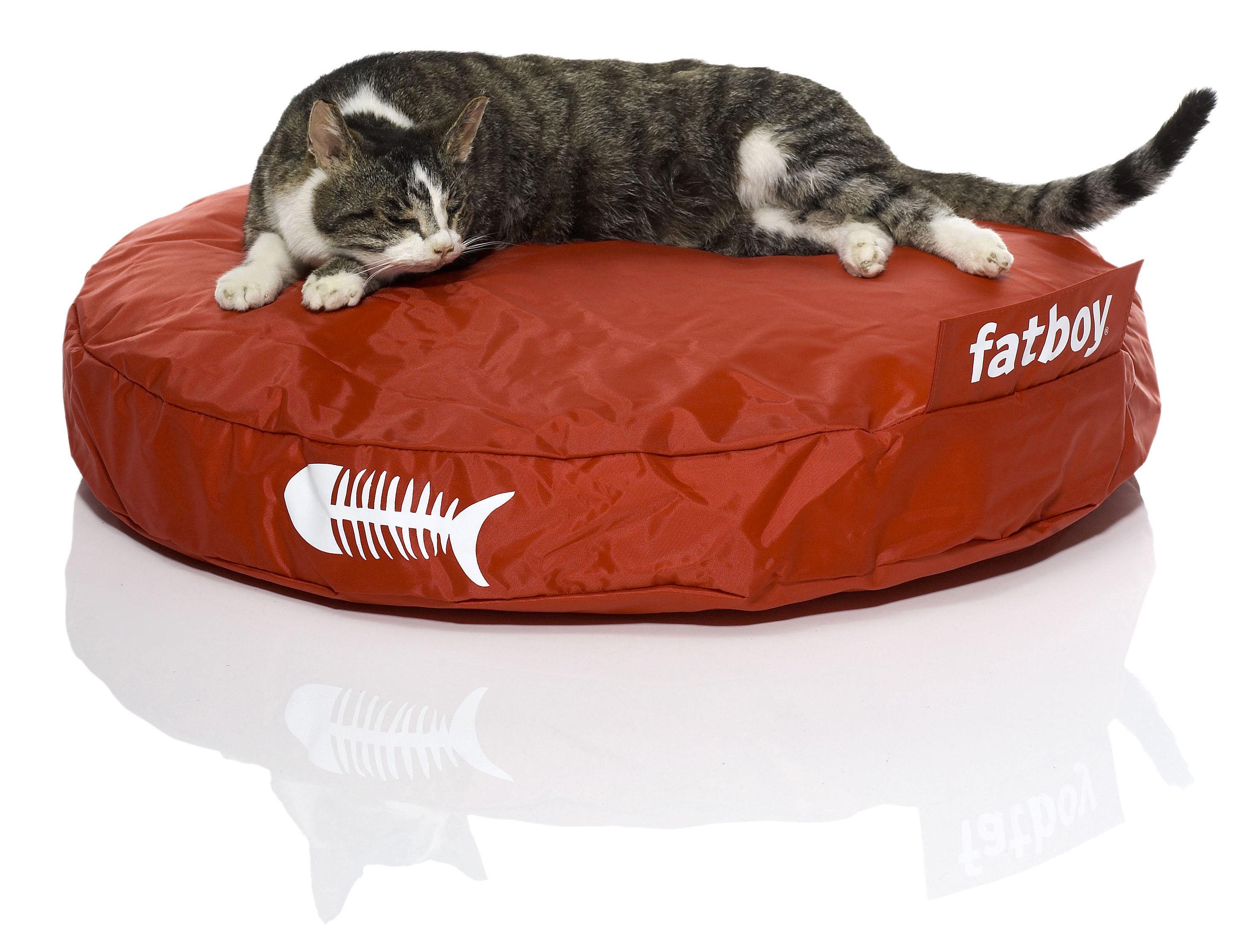 pouf catbag pour chat rouge fatboy. Black Bedroom Furniture Sets. Home Design Ideas