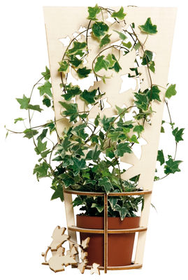 Outdoor - Vasi e Piante - Supporto Plant support - Kit di costruzione di Domestic - Legno - Multistrato di betulla