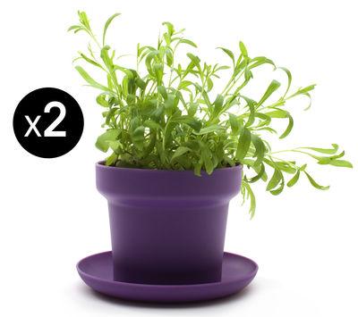 Image of Vaso per fiori Green - / Set da 2 di Authentics - Viola - Materiale plastico