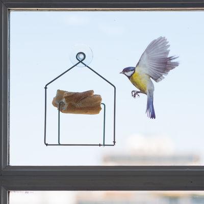 Mangeoire oiseaux tipiou pour fen tre m tal maison pa design - Oiseaux metal pour jardin ...