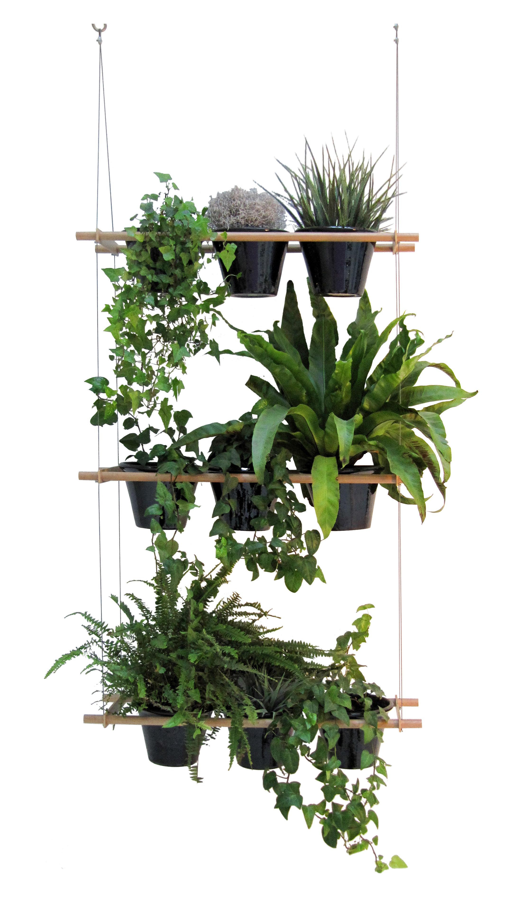 etcetera hanging flowerpot vegetal screen natural wood by compagnie made in design uk. Black Bedroom Furniture Sets. Home Design Ideas