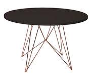 XZ3 Tisch / rund - Ø 120 cm...