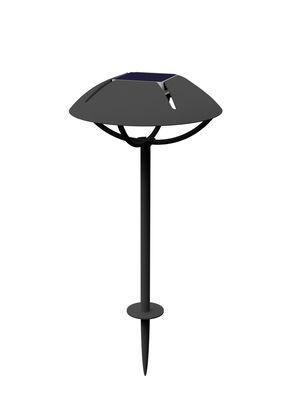 Lampe solaire Parabole LED Sans fil à planter Maiori charbon en métal