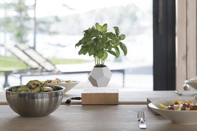 pot de fleurs lyfe pot en l vitation blanc base ch ne flyte. Black Bedroom Furniture Sets. Home Design Ideas