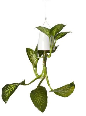 Dekoration - Spaßig und ausgefallen - Sky Blumenkasten aus recyceltem Polypropylen - Large (H 25 cm) - zum Aufhängen - Boskke - Weiß - Polypropylène recyclé