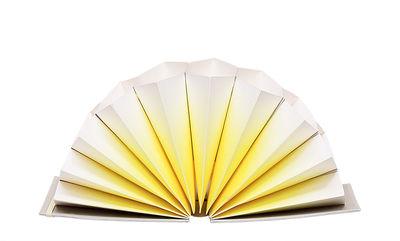 Accessoires - Accessoires für das Büro - Plissé A5 Dokumentenmappe / Dokumentenmappe - 27 x 17 cm - Hay - Gelb / Einband hellgrau - Hartpappe, Papierfaser