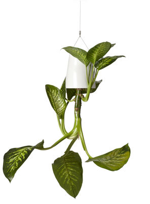 Decoration - Funny & surprising - Sky Flowerpot - Polypropylene Large - H 18.7 cm / Upside down planter by Boskke - White - Recycled polypropylene