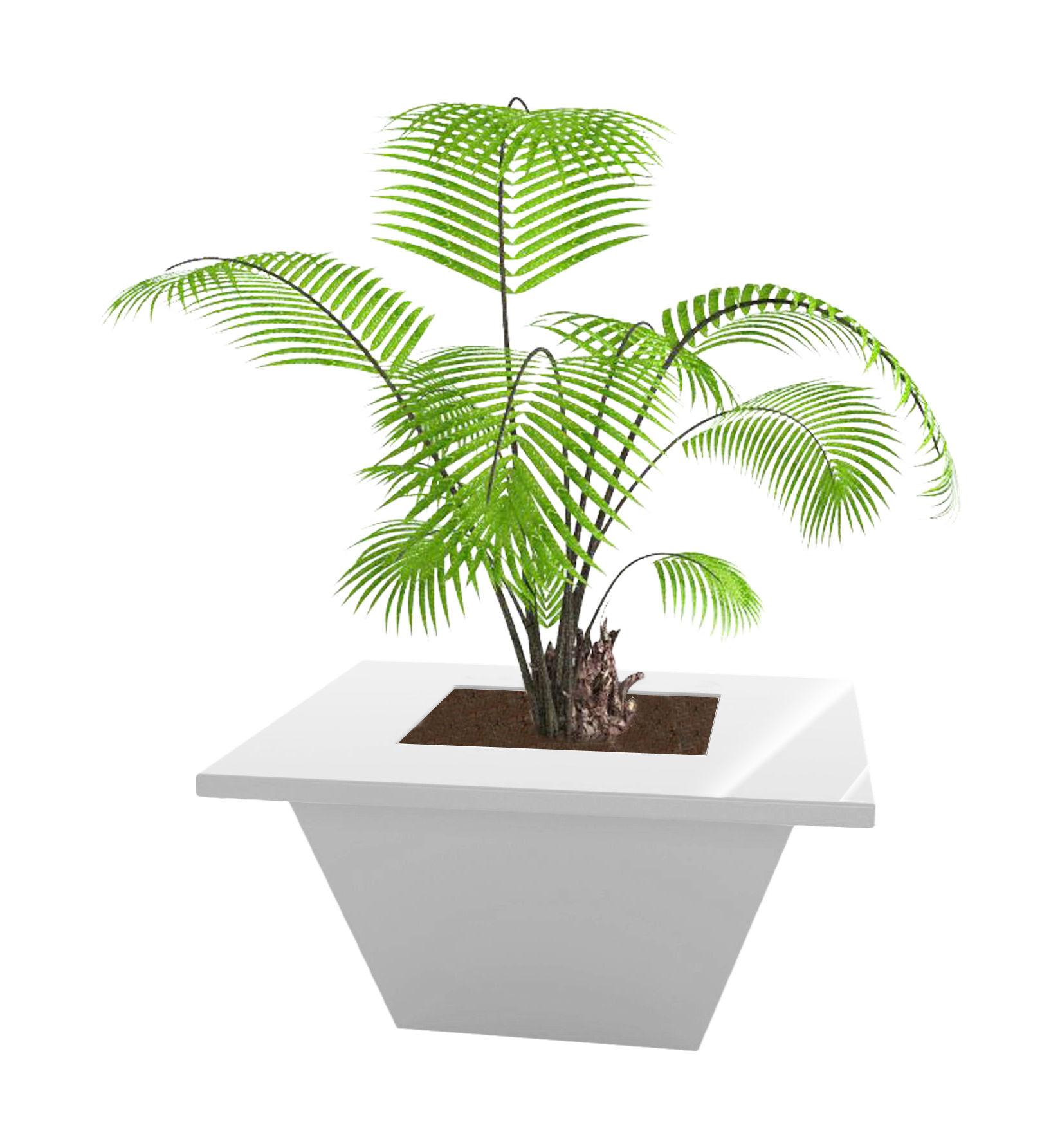 Outdoor - Töpfe und Pflanzen - Bench Blumentopf 80 x 80 cm - lackiert - Slide - Weiß lackiert - lackiertes Polyäthylen