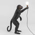 Monkey Standing Table lamp - Outdoor / H 54 cm by Seletti