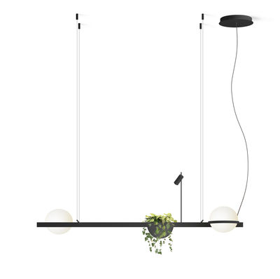 Palma Pendelleuchte / horizontal mit 2 Lampen & Blumentopf - Vibia - Laqué graphite mat