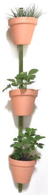 Supporto a parete XPOT / Per 3 vasi da fiori o mensole - H 150 cm - Compagnie - Verde oliva - Legno