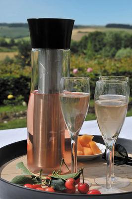 LAtelier du Vin 095389-3 Fresh Carafe Clear