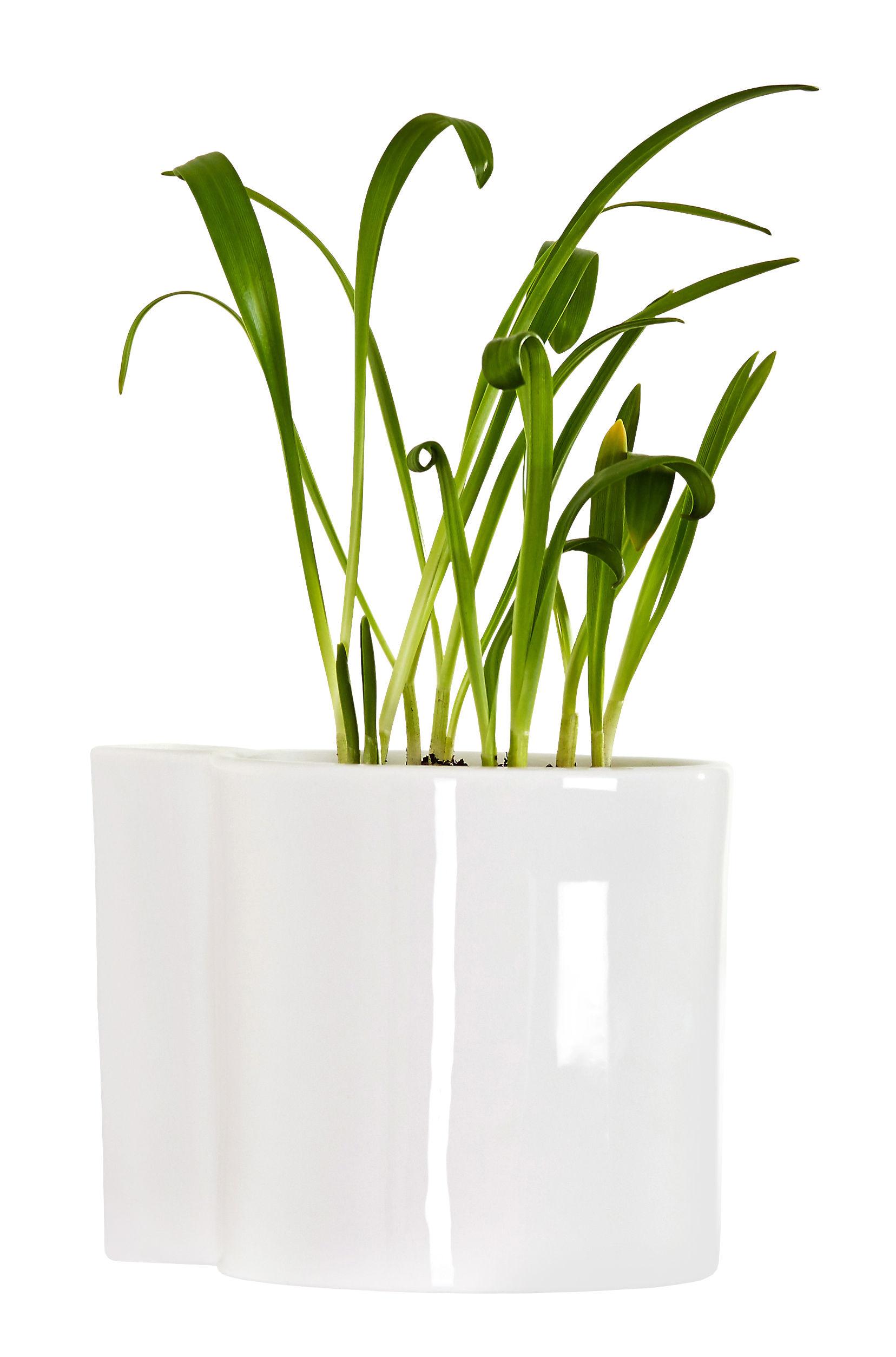 Jardin - Pots et plantes - Pot de fleurs mural Hover / Porcelaine - Ø 12 cm - Thelermont Hupton - Blanc - Porcelaine