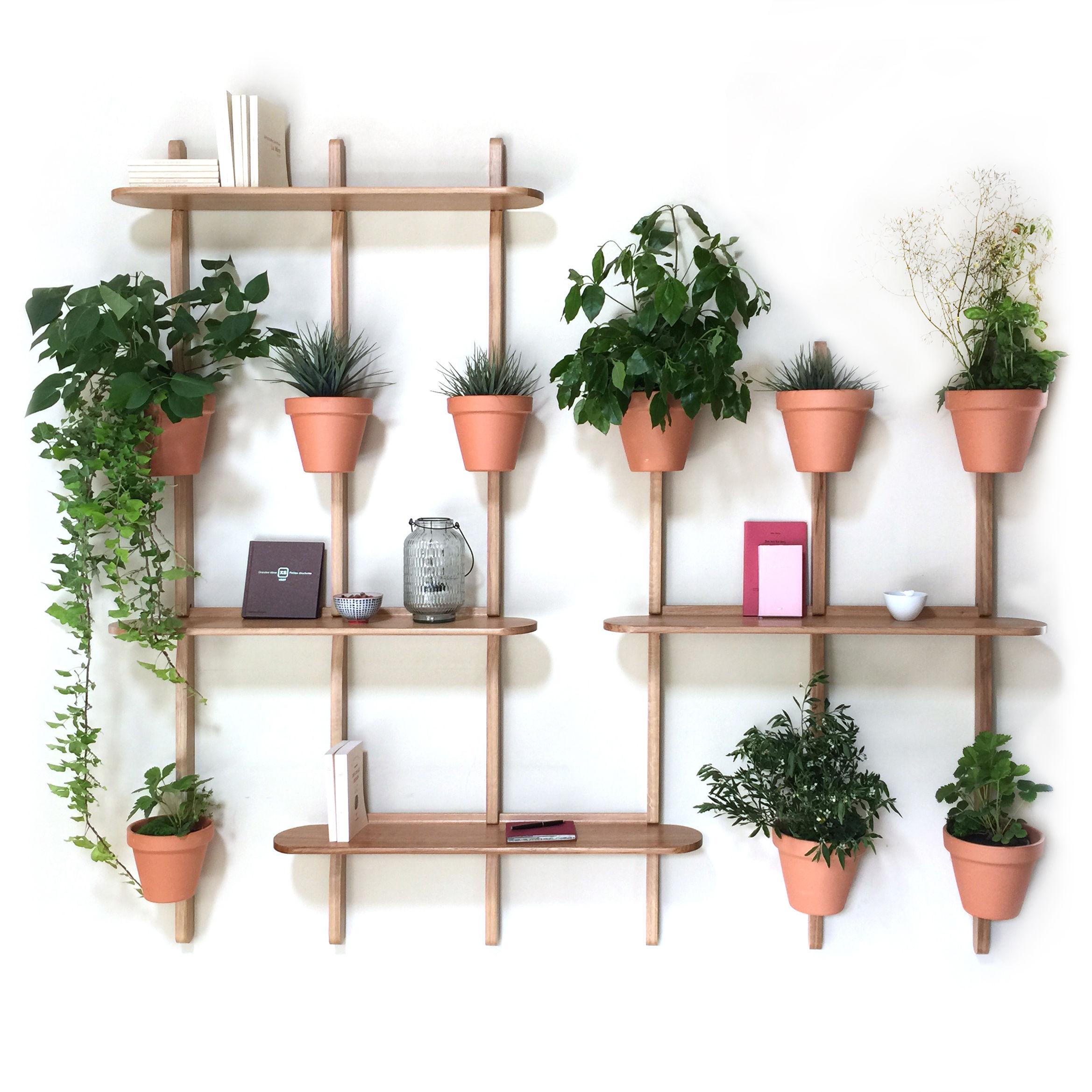 Furniture - Bookcases & Bookshelves - XPOT Shelf - / 4 round shelves L 100 cm + 3 supports H 200 cm + 3 supports H 150 cm by Compagnie - Round shelf / Oak - Varnished solid oak