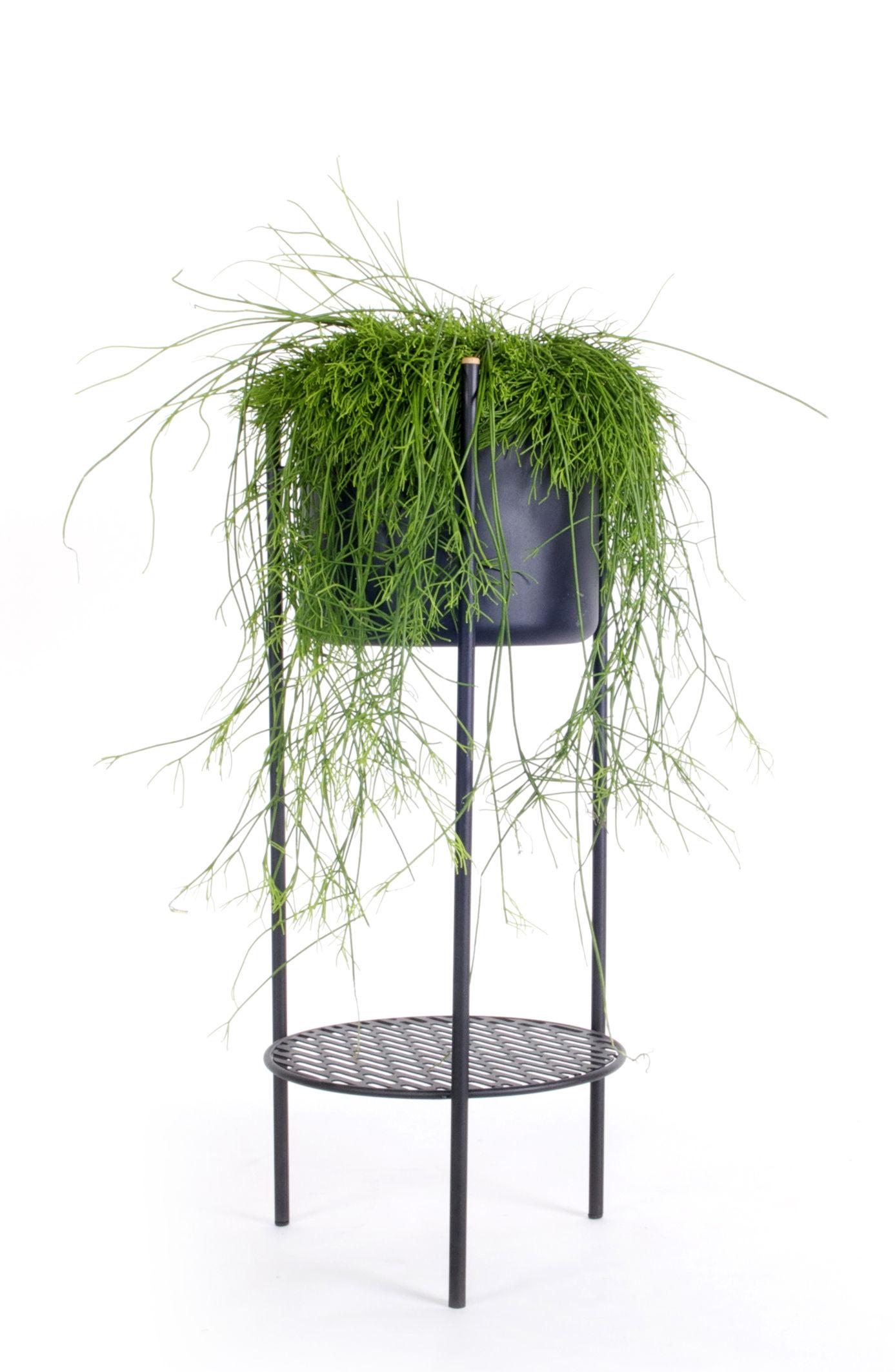 Outdoor - Vasi e Piante - Vaso di fiori Ent Medium / H 78 cm - Metallo - XL Boom - H 78 cm / Nero - Acier laqué époxy
