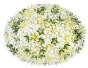 Applique Bloom / Plafonnier - Ø 53 cm - Kartell vert en matière plastique