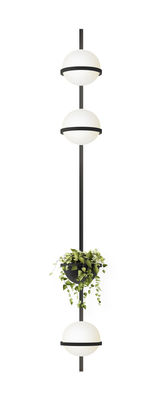 Palma Wandleuchte / vertikal mit 3 Lampen & Pflanzgefäß - Vibia - Laqué graphite mat