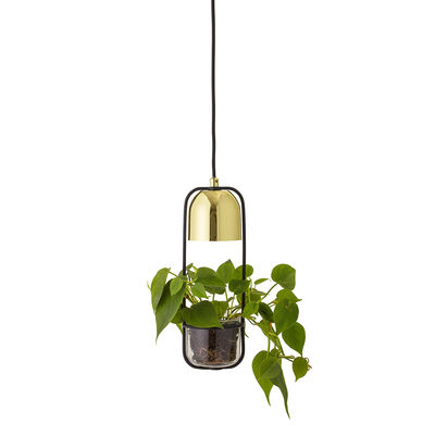 Lighting - Pendant Lighting - Pendant - / With flowerpot - Ø 10 x H 34 cm by Bloomingville - Long / Gold & black - Glass, Metal