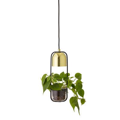 Leuchten - Pendelleuchten - Pendelleuchte / mit Blumentopf - Ø 10 cm x H 34 cm - Bloomingville - Lang / goldfarben & schwarz - Glas, Metall