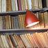 Cornette Clip light - Plain version by Tsé-Tsé