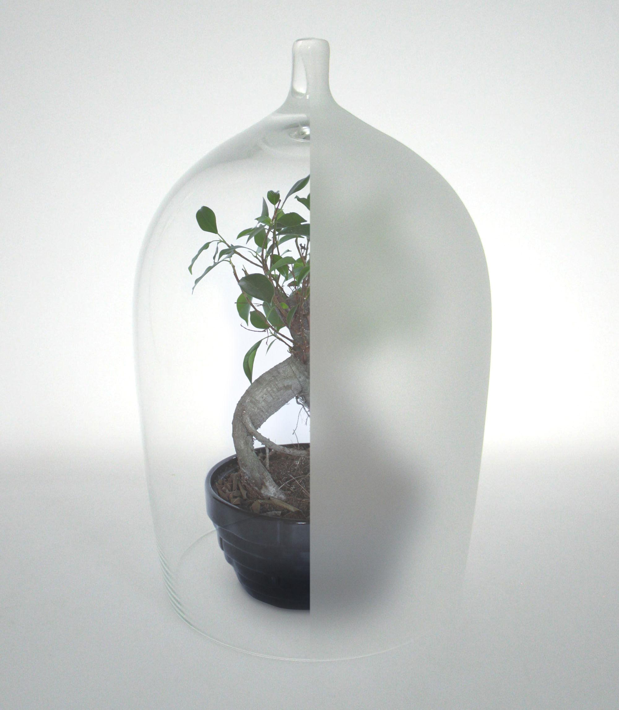 Déco - Objets déco et cadres-photos - Vitrine Nippy S / H 27 cm - Piergil Fourquié - Iconic Serie - Designerbox - Transparent / Translucide - Verre soufflé