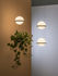 Palma Pendant - / Vertical & planter by Vibia