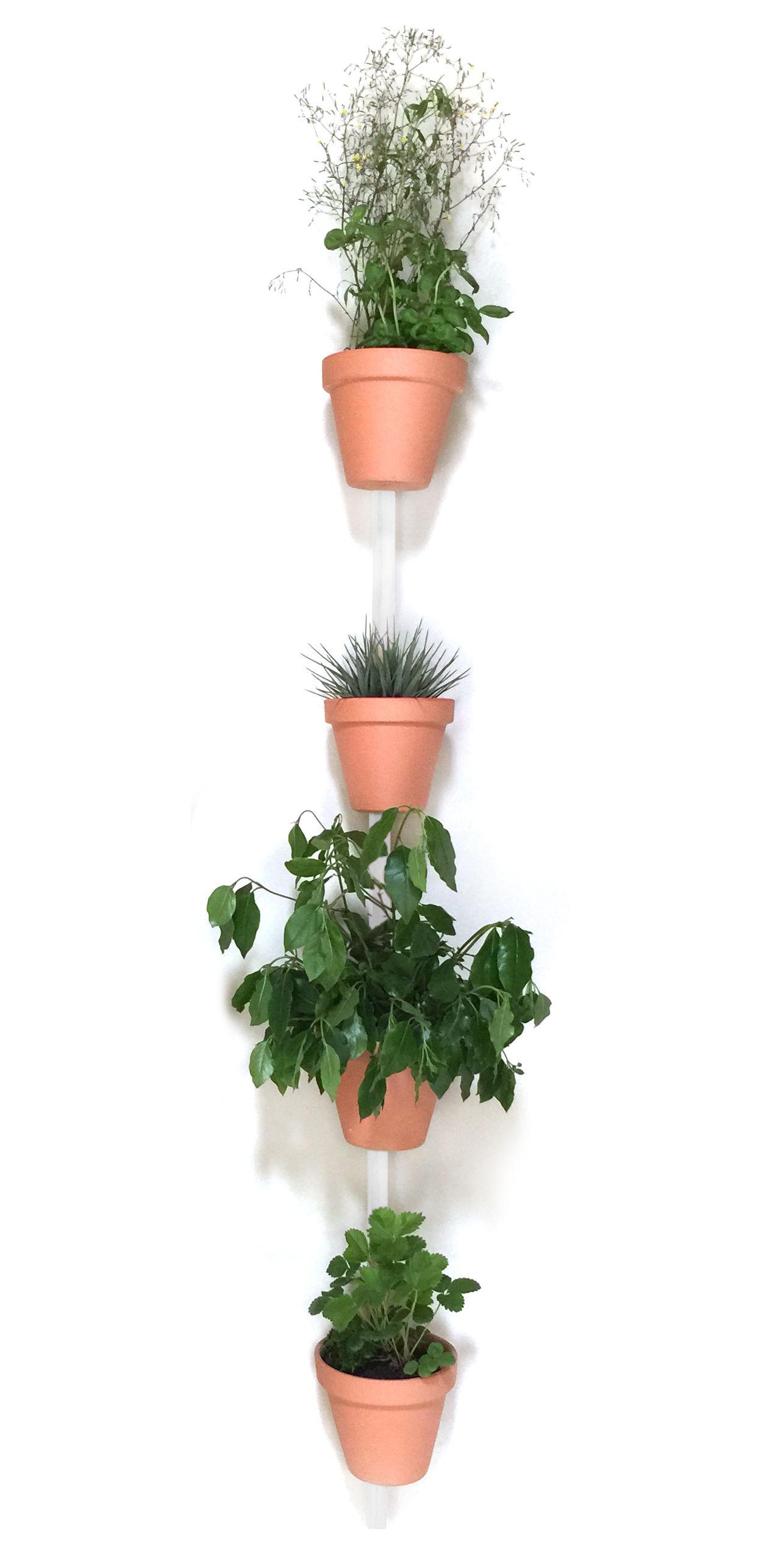 Interni - Vasi e Piante - Supporto a parete XPOT / Per 4 vasi da fiori o mensole - H 200 cm - Compagnie - Blanc - Rovere massello verniciato