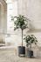 Pot de fleurs Bau Small / Ø 18 cm - Métal - Ferm Living